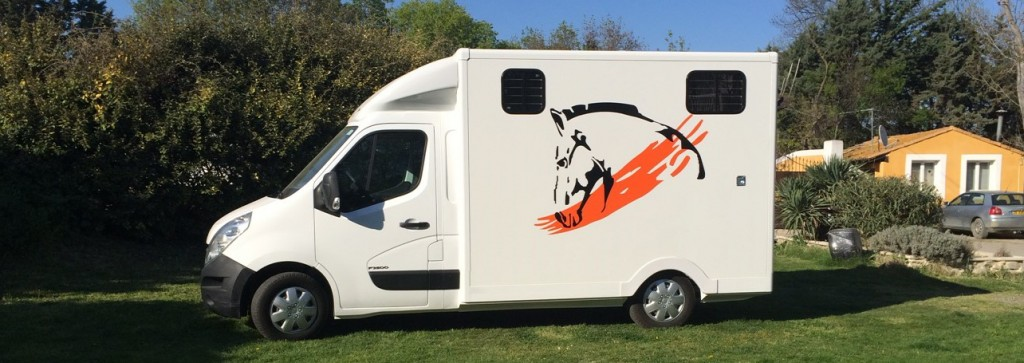 truck horse camion chevaux vl